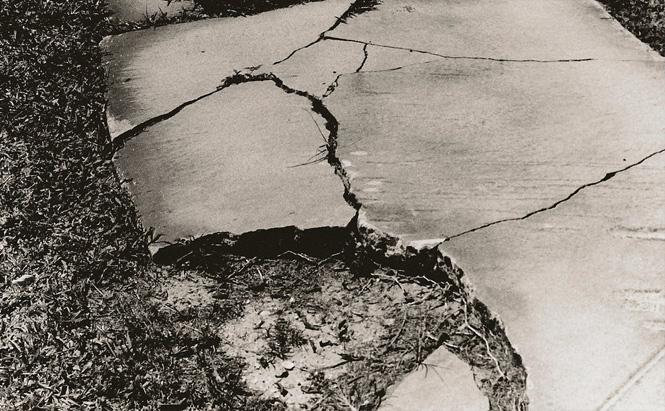 Cracked Sidewalk. Image courtesy of jazart90 on Flickr.